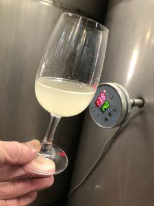 Sauvignon Blanc ferment