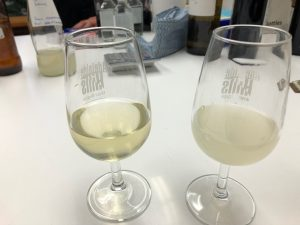 Fume Blanc and sauvignon blanc samples